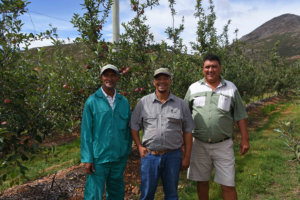 Misgund East Small Farmers Trust Men In Orchard